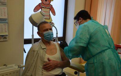 szczepienia wisznia mała